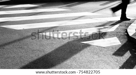 Blurry zebra crossing with silhouette and shadow of person walking in the cold and sunny early morning autumn day in black and white #754822705