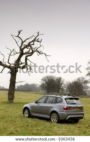 BMW by old tree