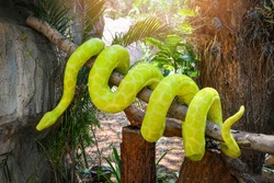 boa snake statue / the big green boa on tree branch on nature park