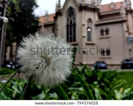 Boa Viagem Church, Belo Horizonte, MG, Brazil #794376028