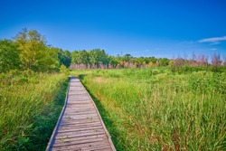 Boardwalk at Pershing State Park, MO