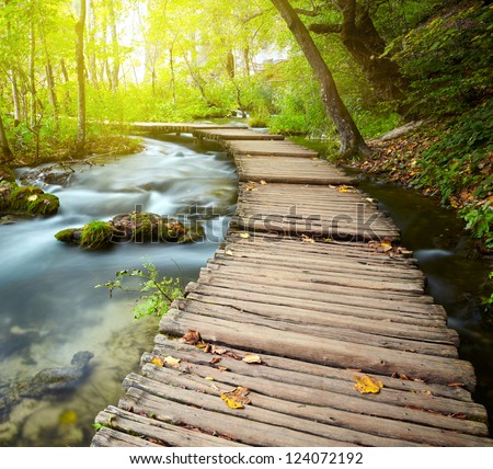 Shutterstock Boardwalk in the park