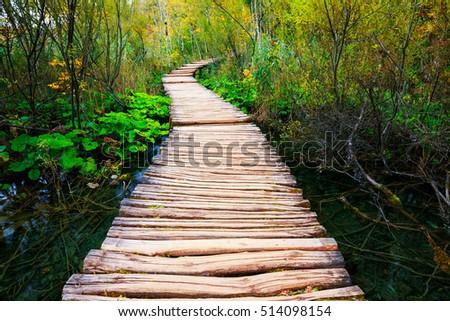 Boardwalk in the park Plitvice lakes, Croatia #514098154