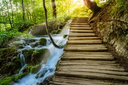Boardwalk through a forest along a creek in Plitvice Lakes National Park, Croatia