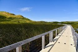 Boardwalk through Price Edward Island National Park