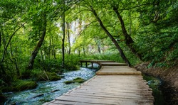 Boardwalk through the woods leading to Galovac Waterfall in Galovac Waterfall in Plitvice Lakes National Park, Croatia