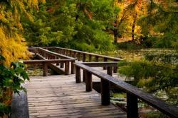 Boardwalk through VanDusen Botanical Garden in Vancouver, British Columbia, Canada