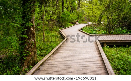 Boardwalk trail through the forest at Wildwood Park in Harrisburg, Pennsylvania.