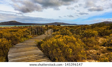 Boardwalk / West Coast National Park, Western Cape, South Africa