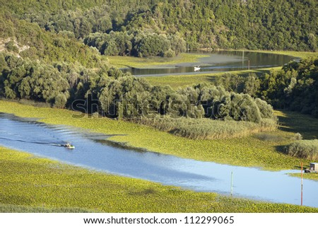 boat is sailing along the river, forest around