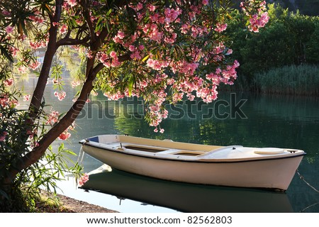 Boat on Ombla river near Rozat, Croatia