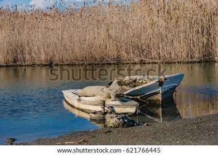 boat wreck at calis beach among the reeds Stok fotoğraf ©