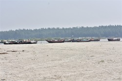 Boats Anchored at Sagar Island at Gangasagar , West Bengal , India