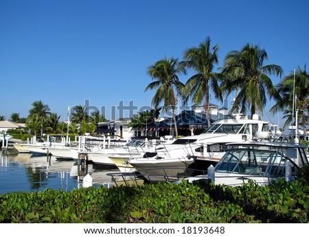 boats docked at a south Florida marina