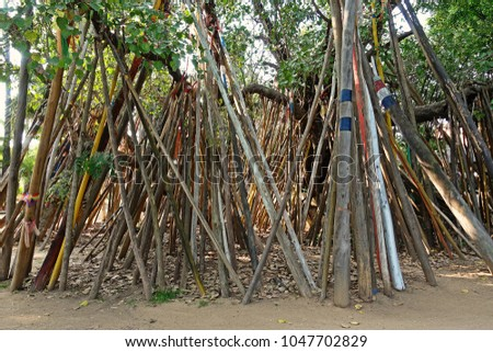 Bodhi tradition crutches. A tradition carried on for more than 200 years, according to legend related to religion, Northern Thailand #1047702829