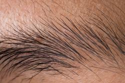 Body Part of Asian skin with eyebrown on Face, close up