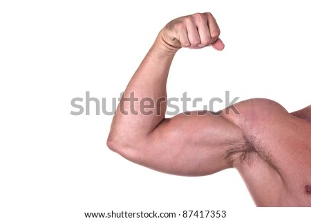 bodybuilder biceps isolated on white background