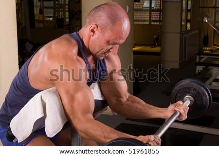 bodybuilder training his bicep