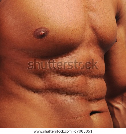 Bodybuilding, stomach, abdomen and chest