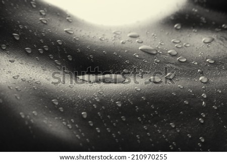 Bodyscape of a nude woman with wet stomach and back lighting in artistic conversion