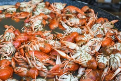 Boiled crawfish, fried crawfish, crawfish étouffée, crawfish beignets. Crayfish or crawdads, crawdaddies during fish market street food festival. Cooked being prepared in a large wok pan