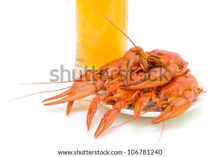 Boiled crayfish against the glass of beer close-up