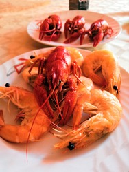 boiled crayfish and shrimp. Fine selection of crustacean for dinner. Lobster, crab and jumbo shrimp on dark background