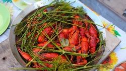 Boiled crayfish with dill in a bowl. River boiled crayfish. A full bowl of boiled crayfish on a blurry background