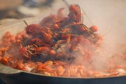 boiled crayfish with seasoning, Large pot