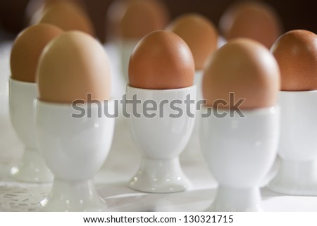Boiled eggs in white stand for eggs