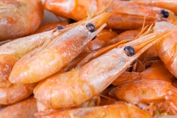 Boiled unpeeled shrimp and prawns, close-up. Seafood of the order of crustaceans. Seafood delicacy