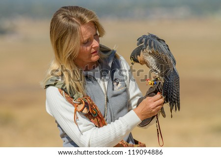 BOISE, IDAHO - OCTOBER 7 : Unidentified trainer at World Center for the Birds of Prey handles a peregrine falcon on October 7, 2012.