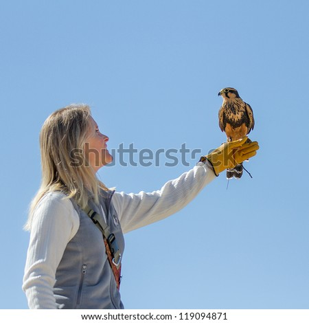 BOISE, IDAHO - OCTOBER 7 : Unidentified trainer at World Center for the Birds of Prey holds a peregrine falcon on October 7, 2012.