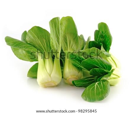 Bok choy (chinese cabbage) isolated on white - stock photo