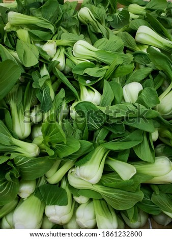 Bok choy, pak choi, or pok choi is a type of Chinese cabbage displayed at grocery stores. ストックフォト ©