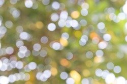 Bokeh abstract nature background. Blurred focus