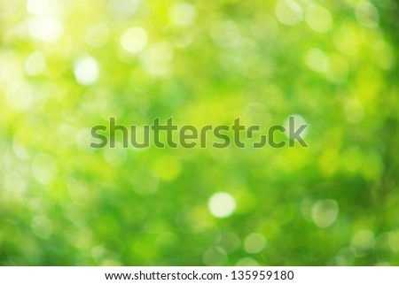 Bokeh background. Element of design. stock photo