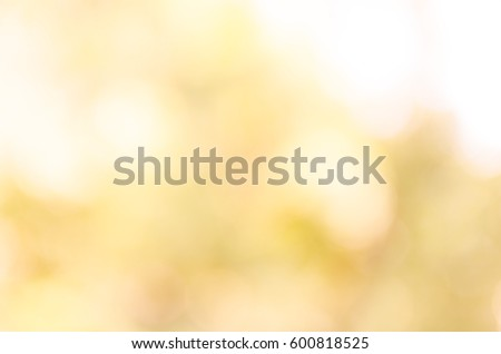 bokeh background from nature under tree shade #600818525