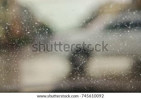 bokeo boise rain nature colors...