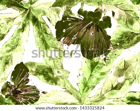 Bold Flower Pattern. Large Tropical Seamless Print on Green Background. Large Exotic Spring Watercolor Maracuya Endless Background. Modern Bold Flower Pattern.