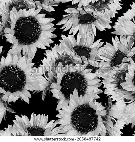 Bold Monochrome Sunflower Repeat Pattern