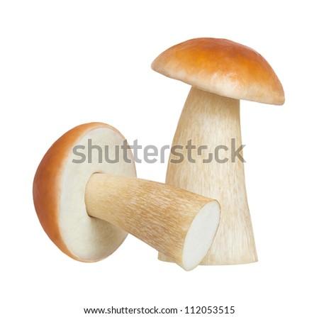Boletus mushrooms on a white background