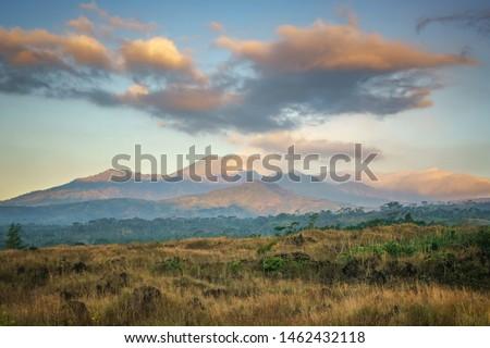 Bondowoso, East Java / Indonesia Savana Wurung Crater (Kawah Wurung) during the dry season, located in Curah Macan village, Bondowoo. Foto stock ©