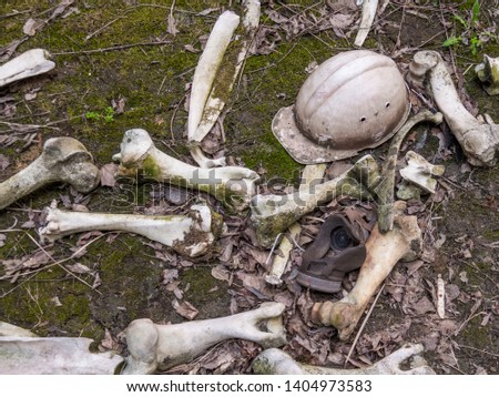 Bones and a helmet on the territory of the exclusion zone in Chernobyl. Installation on the territory of the Chernobyl zone. Chernobyl Exclusion Zone after the disaster