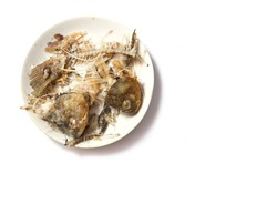 bones of fish on a plate