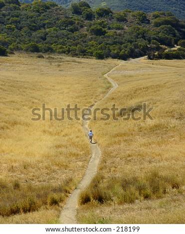 Boney Mountain Trail Run in summer.
