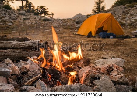 Bonfire burning in tourist camp in mountains. Beautiful campfire, burning wood by tent in summer evening. Active lifestyle, traveling, hiking and camping concept. Campfire burning in slow motion