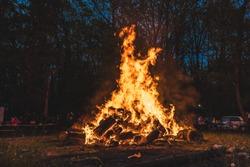 Bonfire burning trees at night. Large orange flame isolated on a black background. Fire on black. Brightly, heat, light, camping, big bonfire