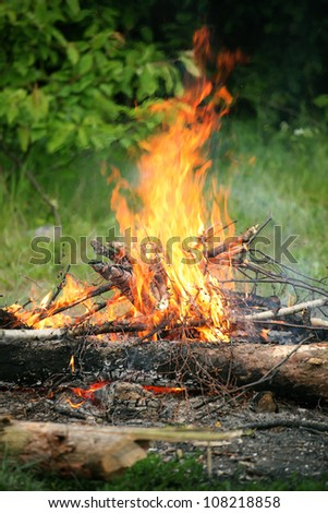 bonfire, campfire in the summer forest