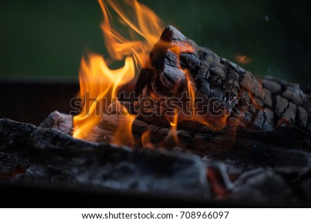 Bonfire. Fire wood. Grilling and cooking fire. Woodfire with flames.  #708966097